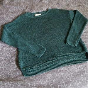 Ann Taylor Loft sweater, medium